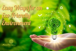 easy for eco friendly environment
