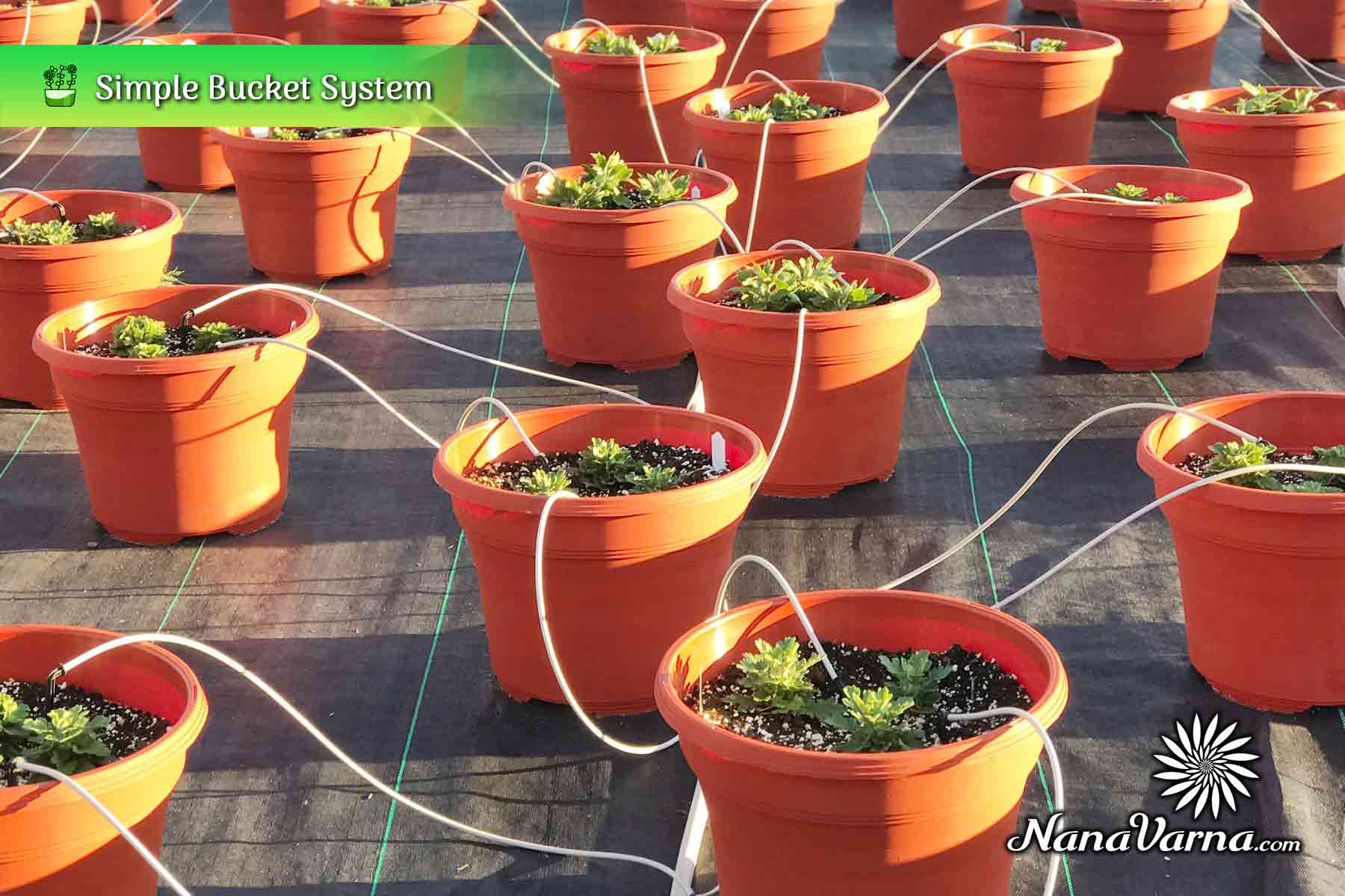 hydroponic garden system 03