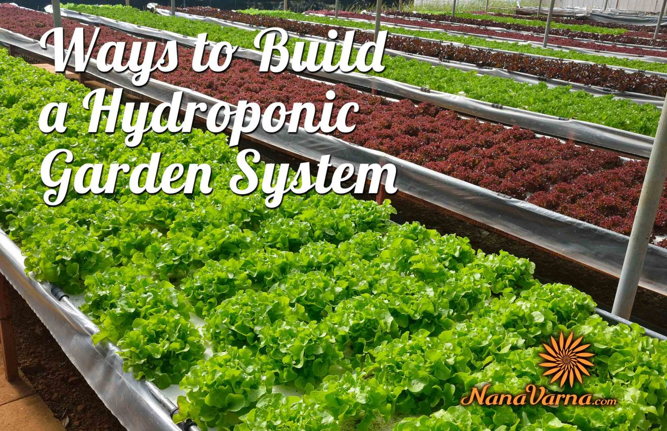 hydroponic garden system