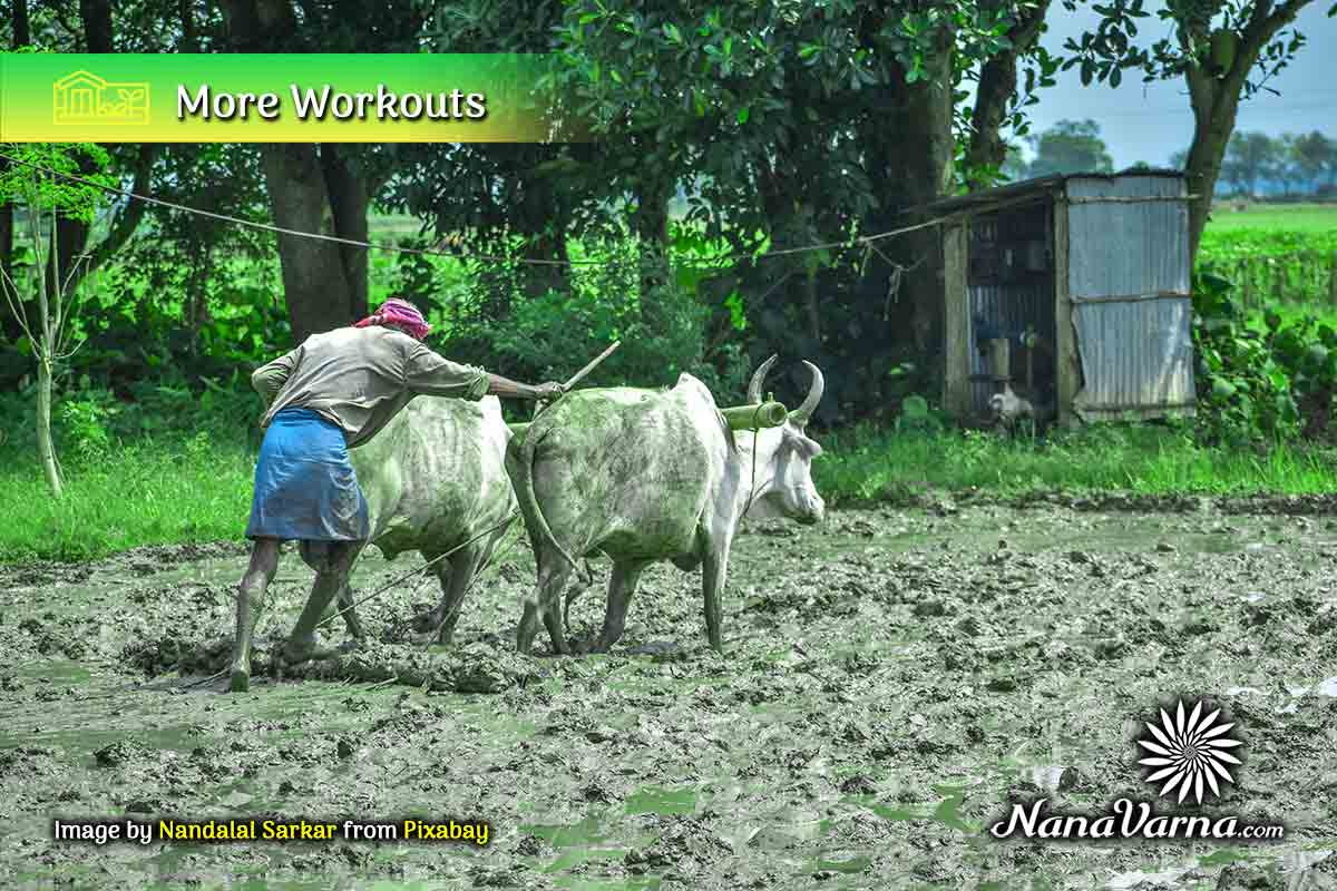 indian village life 10